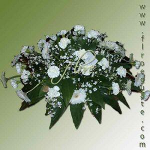 palmatoria-funebre-blanca