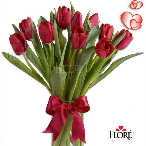 Tulipanes de Color