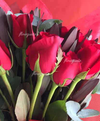Rosas Rojas extra grandes