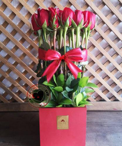 Rosas día del Cariño, Amor Infinito