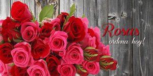 Arreglos-de-rosas-guatemala