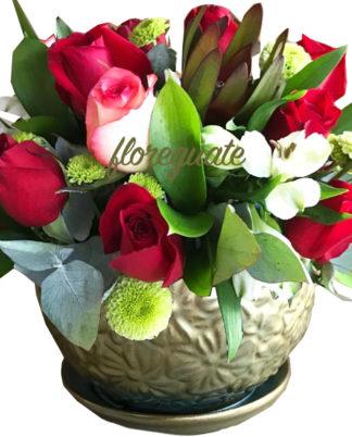 Rosas 24K