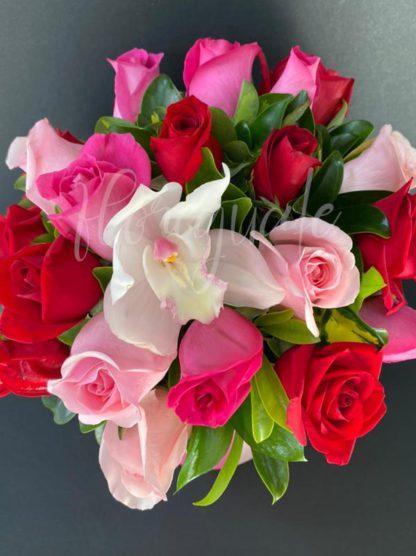 Rosas Pink Love